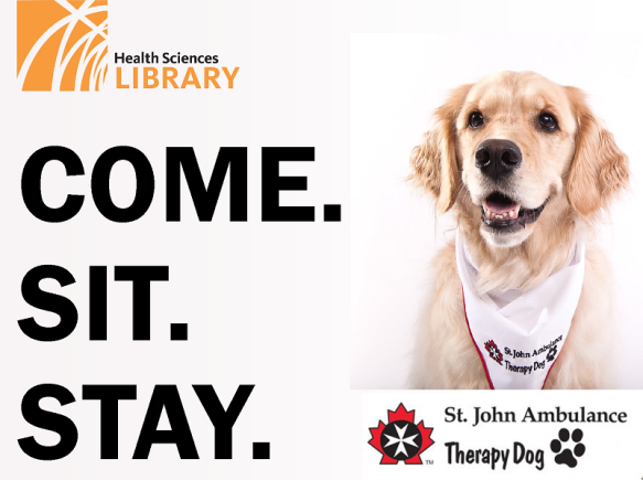 therapydogs2019_flyer